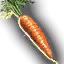 Food_Carrot_Small.png