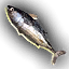 Food_Swordfish_Small.png