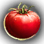 Food_Tomato_Small.png
